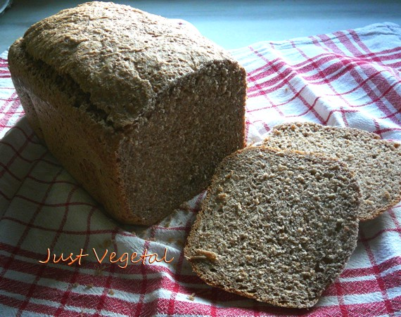 Just vegetal pan integral de espelta en panificadora for Como hacer una cocina integral paso a paso